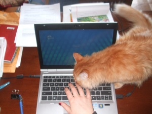 Just checking, Mom, to make sure you are hitting the right keys!