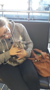 Angelica picks up Anastaysia