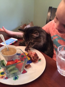 Boris tries to help himself to Chloe's chicken. Thanks, Chad for all the cute photos.