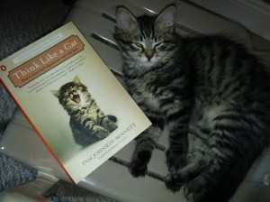 "This book is one I recommend to all of our future pet parents. Tara sent me this photo and said ""didn't notice the similarity until now. :)"