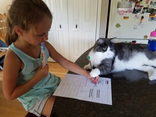 lincoln-doing-homework